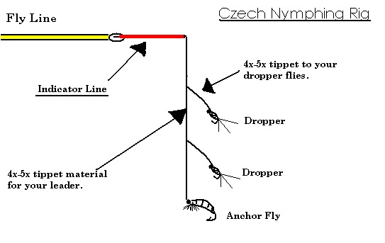 Saturday demo czech nymphing with domingo rodriguez for Trout fishing rigs setup